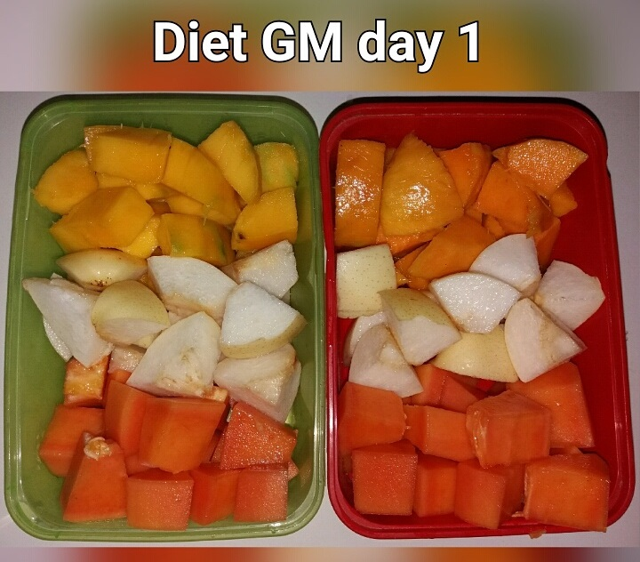 day 1 diet GM