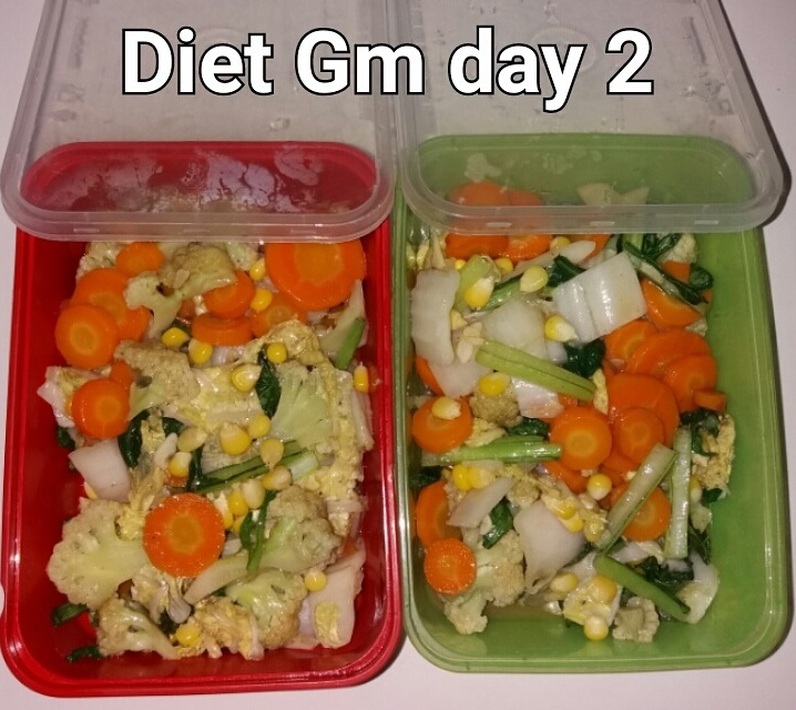day 2 diet GM