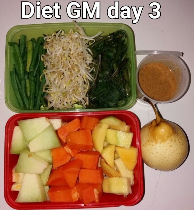 day 3 diet GM