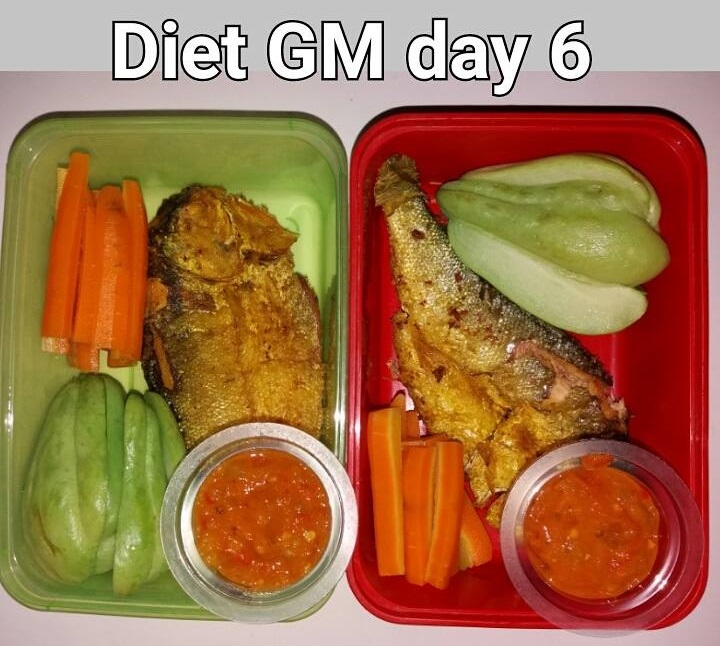 day 6 diet GM